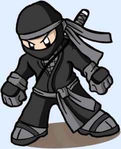 mini-ninja2